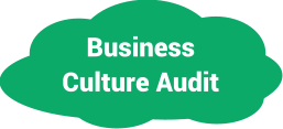 Business Culture Audit
